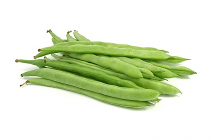 Green bean processing line